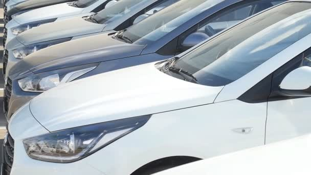 Selling and renting cars concept. Row of cars