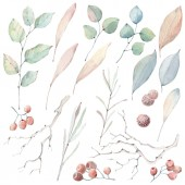 Fotografie kolekce, akvarel listy. To je ideální pro karty, vzory, květiny kompozice, rámečky, svatební oznámení a pozvánky