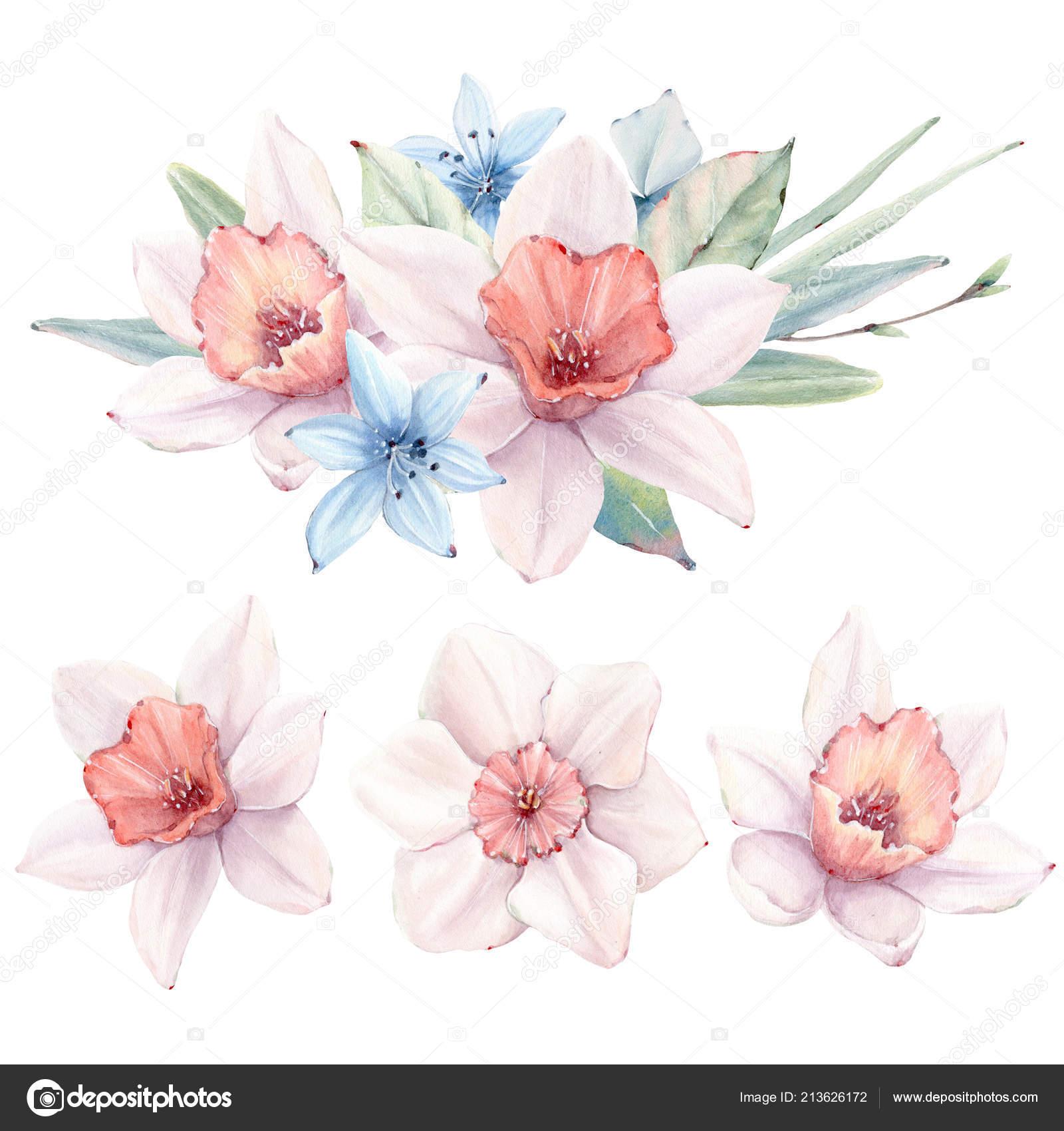 Aquarell Fruhlingsblumen Vintage Stil Festgelegt Ist Ideal Fur