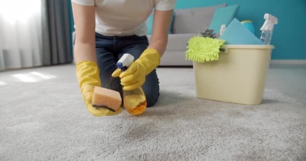 Woman using detergent and brush while cleaning carpet