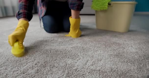 Housewife in rubber gloves cleaning carpet with brush