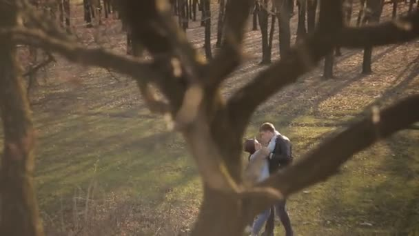 Couple in love walks in the forest at sunset