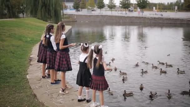 Schüler in Schuluniform füttern Enten in einem Teich auf dem Schulhof. Girls College Coeds in derselben Schuluniform füttern die Enten im Teich auf dem Campus