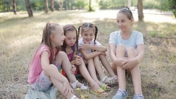 Four girls girlfriend sitting on the grass in the Park and talk