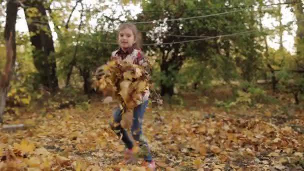 A little girl puts yellow leaves in a big pile.