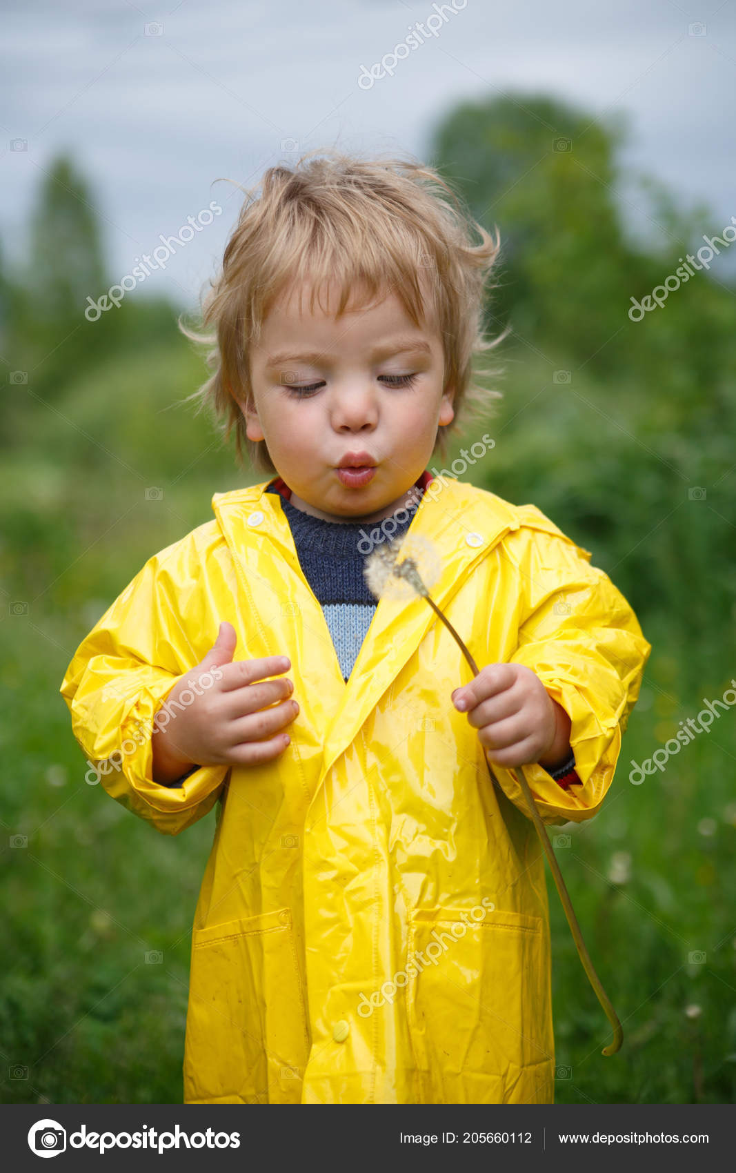 e95b32a4c Small Child Yellow Raincoat Blows Bouquet Couch Potatoes Summer Day ...