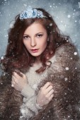 Fotografie Fantasy portrét dívky v koruně ve sněhu