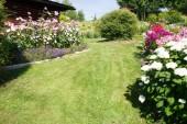 Přírodní pozadí. Zahradní trávník s květinovou zahradu na obvodu