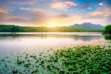 Scenic landscape with lake in Hangzhou, China