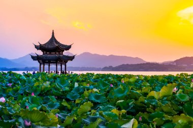 The lotus and sunset clouds in ancient pavilion in West Lake, Ha