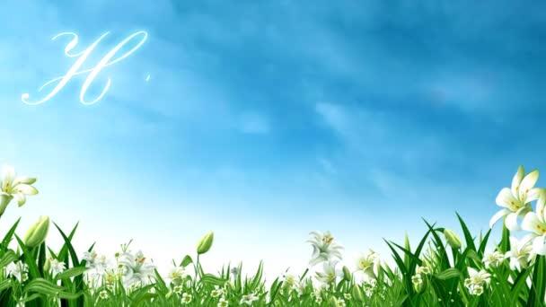 Šťastné Velikonoce světlo trámy na Lilly pole 4k Loop nabízí postupné mraky nad polem lilií s animovanou zprávu Veselé Velikonoce s světelné paprsky vycházející z textu