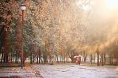 őszi eső a parkban