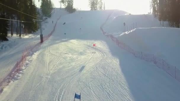 Luftaufnahme des Skigebiets im Wald