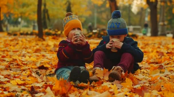 Little boys are drinking hot tea in the fallen leaves in the autumn park