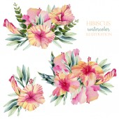 Watercolor hibiscus flowers and leaves bouquets collection, hand painted isolated on a white background