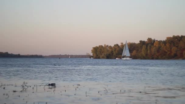 White sailboat is sailing on the river