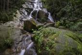Splendido scenario della cascata tropicale che scorre attraverso la bella foresta verde