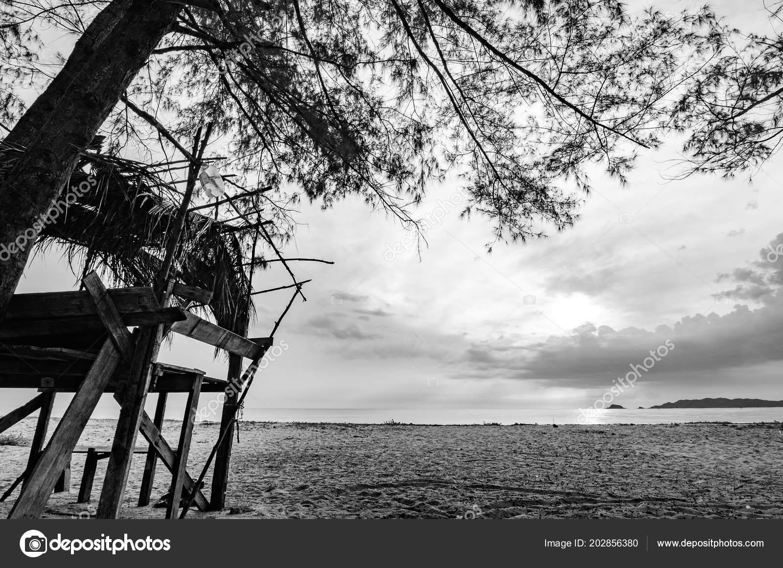 Immagine Bianco Nero Cottage Legno Sul Mare Con Sfondo Cielo Foto