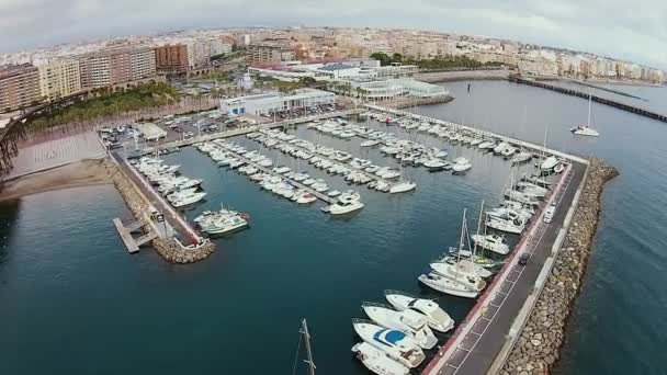 Nice dock with many sailing yachts, beautiful city on the background, aerial shot