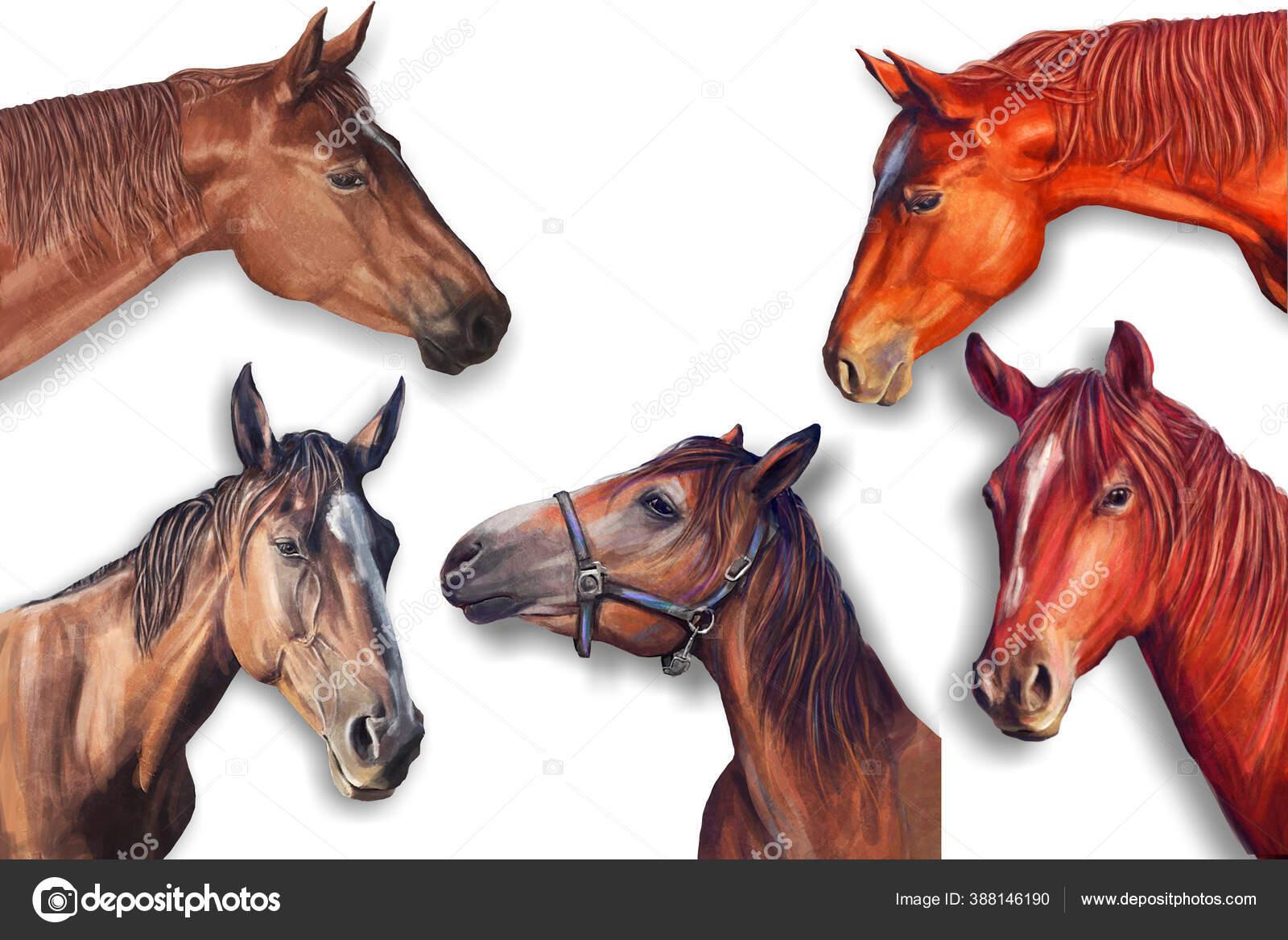 Horses Head Painting In The Interior Stock Photo C Yulianas 388146190