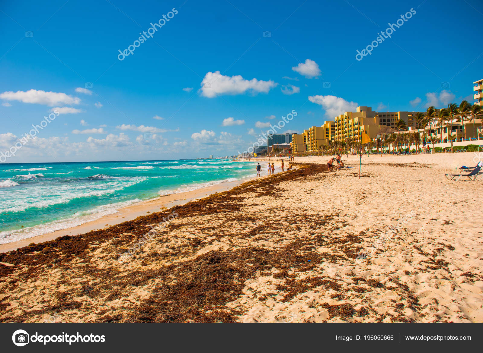 Horrible Dirty Beach Caribbean Sea Tina Seaweed Garbage Cancun