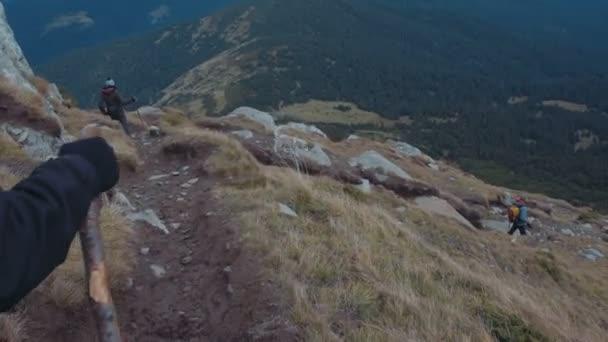 Skupina přátel, Turistika v horách s sibiřský husky pes