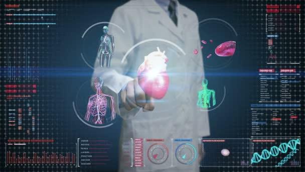 Lékař se dotýká digitální displej, ženské tělo skenování krevní cévy, lymfatická, srdce, oběhového systému v řídicím panelu digitální displej. Modrá rentgenový pohled.
