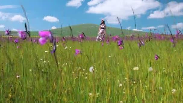 Mladá krásná šťastná žena v louce dlouhé šaty, vlající ve větru. Hezká smilind dívka v květinový věnec těší přírodní krajina. Quadrocopter hnutí