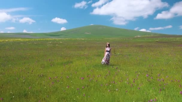 Young beautiful happy woman staying in meadow long dress fluttering on the wind. Pretty smilind girl in flower wreath enjoying nature landscape. Quadrocopter movement 25fps.