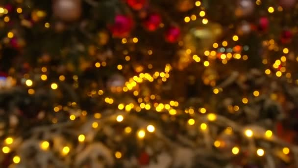 Zavři v noci světla na vánočním stromku. Novozélandský strom s dekoracemi a osvětlením. Pozadí dekorace Xmas. Mnoho světel na jedlových stromech nový rok a vánoční stromek