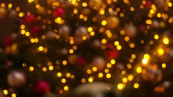 Zavřít vánoční stromeček světla třpytící se v noci. Mnoho světel na jedle Strom Nový rok a vánoční ozdoby stromků. Krásné vánoční pozadí.