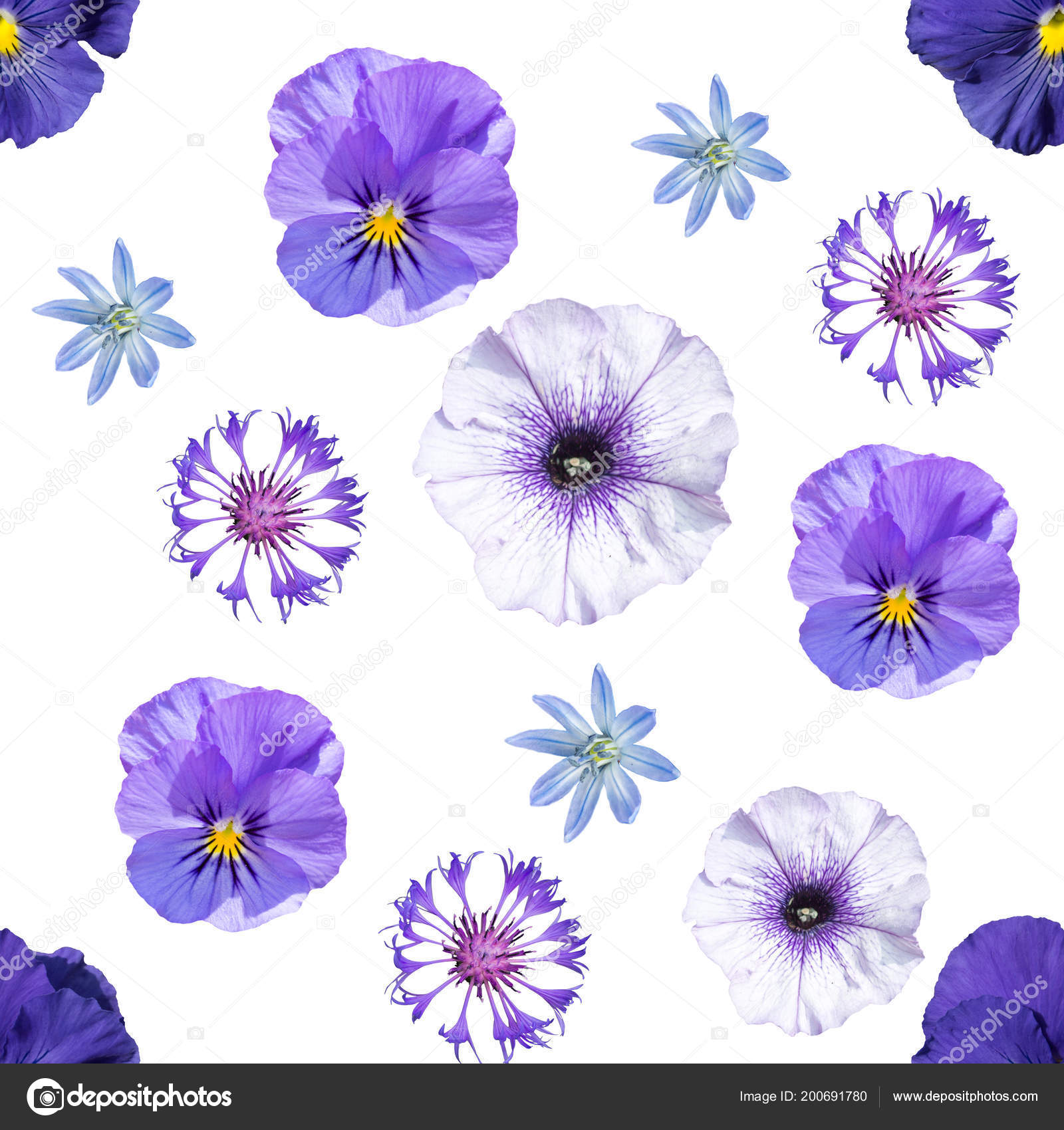 Seamless pattern blue violet flowers white background stock photo seamless pattern blue violet flowers white background stock photo izmirmasajfo