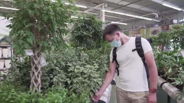 Domácí zlepšení se zelenými rostlinami během karantény a pandemie koronaviru, covid19. Kavkazský kupec v ochranné lékařské masce si vybere domácí zahradu v jeslích