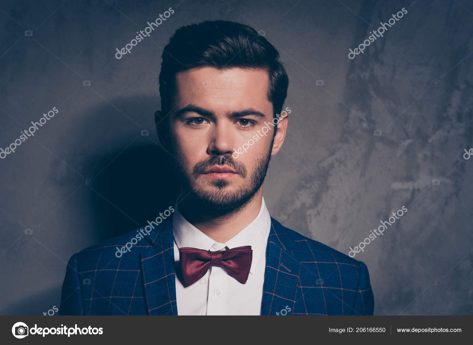 38060f46c08c Close up studio photo portrait of attractive elegant classic classy with  serious facial expression burgundy bow-tie checkered dark jacket white  shirt ...