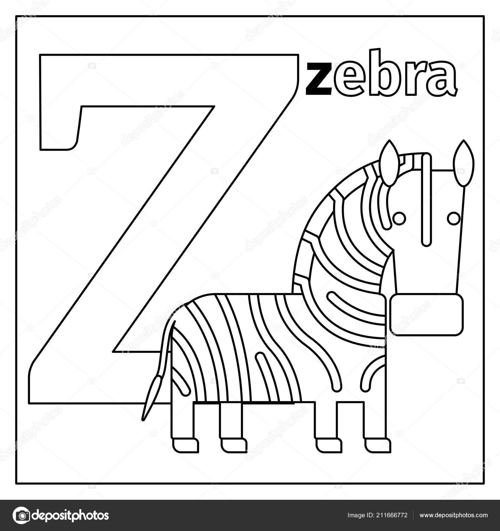 Cebra La Letra Z Para Colorear Página Archivo Imágenes