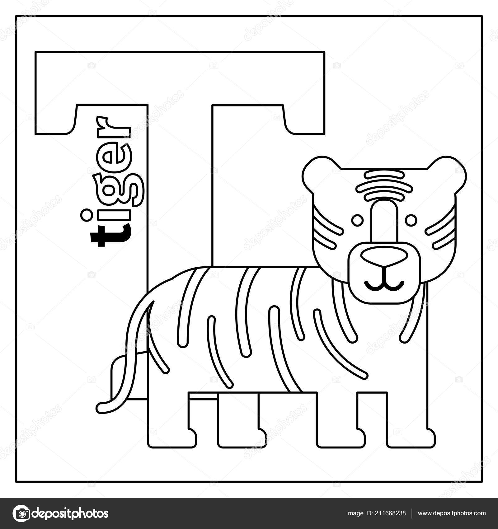 Tiger Letter T Coloring Page Stock Vector C Ssstocker 211668238