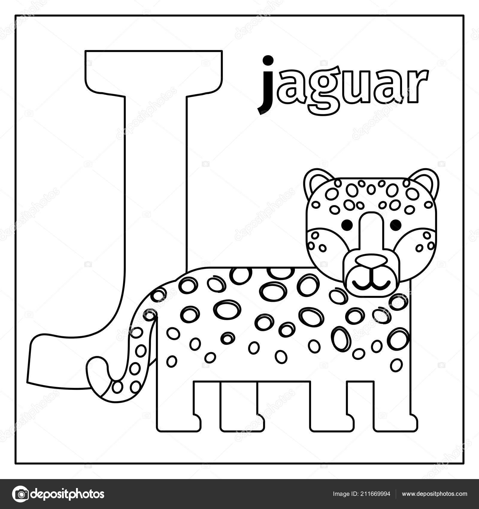 Kleurplaten Letter J.Jaguar Letter J Kleurplaat Stockvector C Ssstocker 211669994