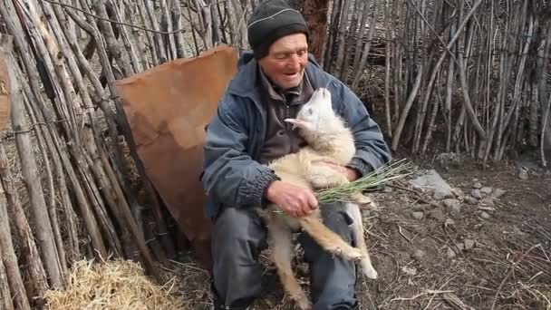 Ein sehr alter kranker Mann sitzt auf einem Schemel und hält eine Ziege in den Händen, spielt und füttert. Leben im Dorf. Konzept der natürlichen Wirtschaft.