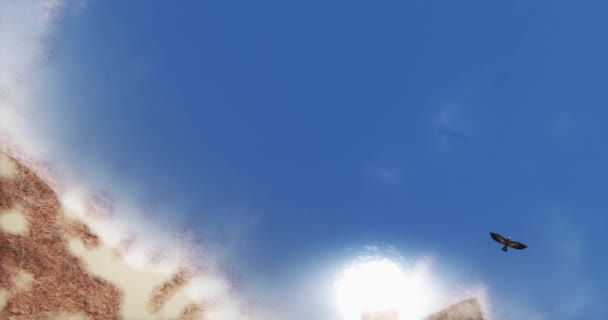 4k letecké Eagles vznášející se nad klidné vody oceánu povrchu  island, slunce odrážejí na jezeře