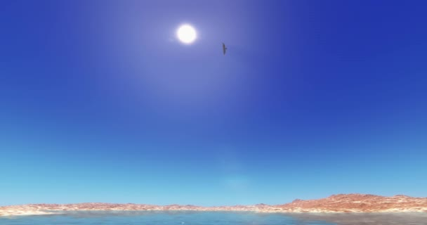 4k Eagles hovering over high sky,lake  mountain,Bright sun.