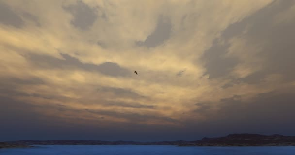 4k Eagles hovering over high sky,lake  mountain,Bright sun  cloud at dusk.