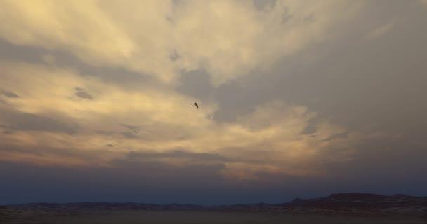 4k Eagle hovering in the wilderness at dusk.