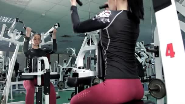 sportliche Frau, die die Muskeln der Rückengymnastik trainiert. Gesundheit, Kraft