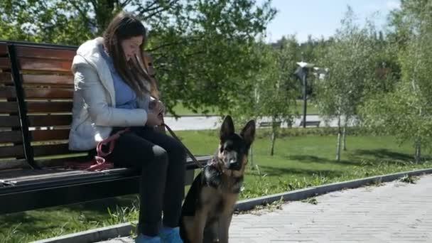 glücklicher Hund Deutscher Schäferhund im Park mit einem jungen Mädchen, Mädchen mit Schnörkel füttert das Hundefutter, Natur niedliches Haustier Welpen schöne freundliche Sonnenlicht
