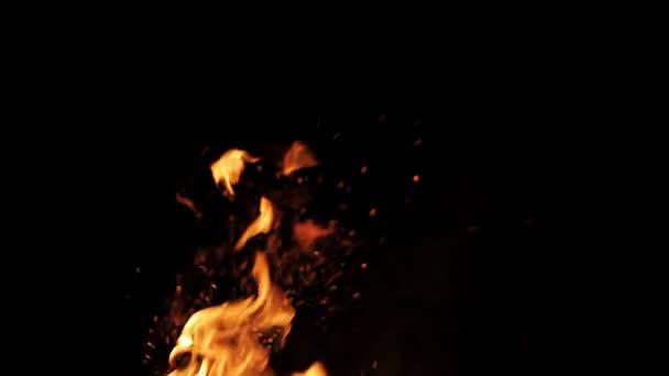 Valódi tűz elszigetelt fekete háttér
