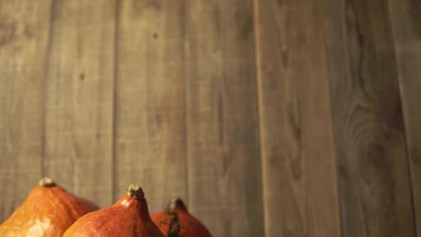 Fotoaparát sklouzne dolů, aby ukázal zátiší podzimních dýní se suchými listy a cibulí