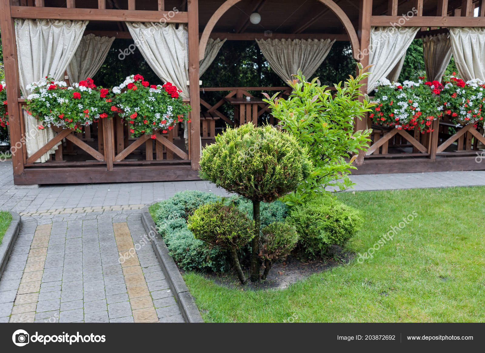 Kleine Garten Und Einzigartigen Pflanzen