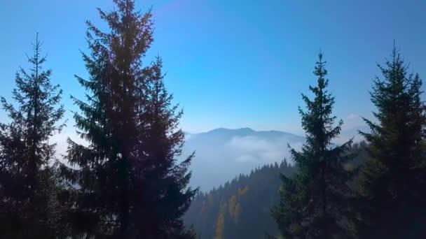Létání v horách nad ranní mlžný Les