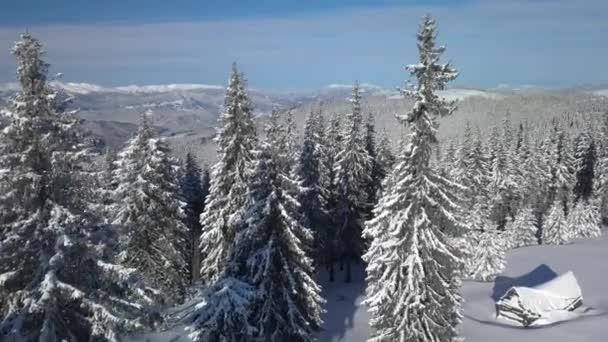 Im Winter über Wald und Berge fliegen
