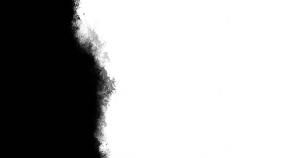 Verticale Art Brush Stroke Sfondo Animato Video Stock Mazhuzha
